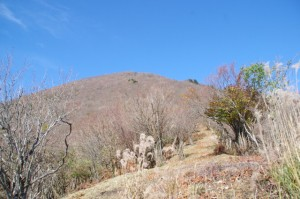 高見山山頂を望む(大峠の登山口〜高見山山頂)