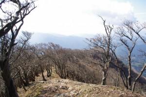 山頂から平野登山口方向を望む(高見山山頂)