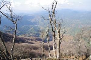 山頂からからの眺望(高見山山頂)