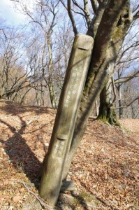 高見山山頂〜大峠の登山口