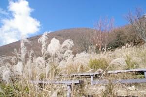 休憩広場(高見山山頂〜大峠の登山口)