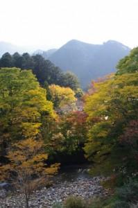 波瀬神社から波瀬本陣跡への途中から望む櫛田川(飯高町波瀬)