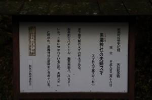 黒瀧神社の夫婦スギの説明板(松阪市飯高町森)
