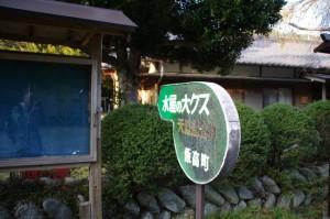 「水屋の大クス 天然記念物」の案内板(水屋神社)