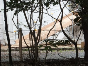 造替工事が開始された新御敷地(月讀宮)