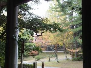 裏参道入口付近(倭姫宮)