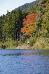 粟生頭首湖(大台町粟生)