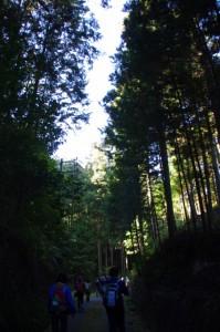 熊野古道(宮川側)にて、高奈八柱神社〜道標地蔵(国道42号)
