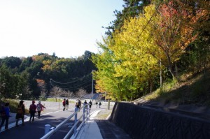 熊野古道から離れて、三ツ谷池へ