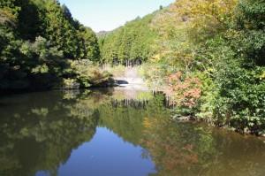 三ツ谷池公園の来ヶ谷池(大台町粟生)