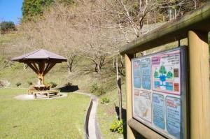 三ツ谷池公園のせせらぎ広場(大台町粟生)
