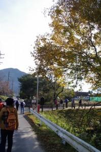 三瀬砦跡付近(大台町下三瀬)