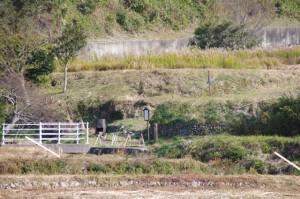 熊野古道と案内板(大台町下三瀬付近)