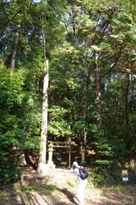 里登り口(熊野古道)
