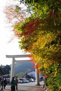 道の駅 奥伊勢木つつ木館前の駐車場付近