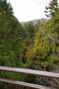 国道42号の三瀬谷橋(大谷川)から望むJR紀勢本線の鉄橋
