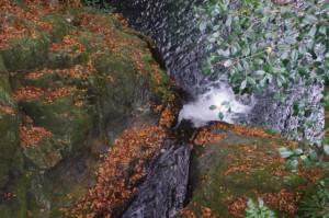 大谷橋よりほぼ真上から望む清滝(大谷不動明王付近)