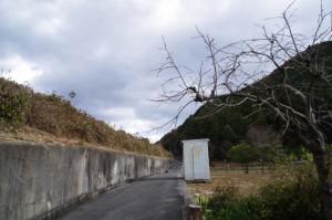 熊野古道の道標(?)付近の国道42号下、この先に暗渠は無し