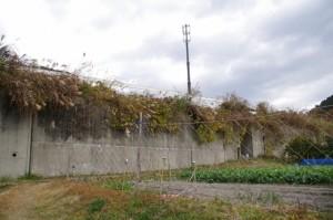 道標(↓慶運寺・北畠具教三瀬砦跡、→三瀬の渡し)の左手の道から望む国道42号のトンネル
