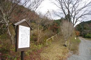 観音堂跡(下三瀬八柱神社近く)