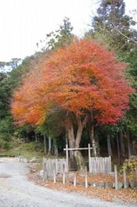 八柱神社の片隅に、山神?(大台町下三瀬)
