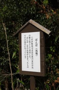 馬場(ばんば)の説明板(下三瀬八柱神社〜下三瀬跨線橋(JR紀勢本線))