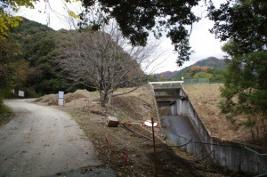 大谷川の水源である東池付近(大台町)