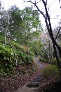 茶臼山の山道(参道)(大台町)
