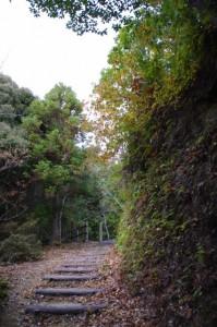 茶臼山の山道(参道)、広場へ(大台町)
