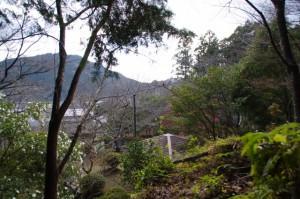 茶臼山の広場から続く山道を途中から引き返して辿り着いた三瀬館跡付近(大台町)