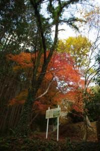 茶臼山の説明板付近(大台町)