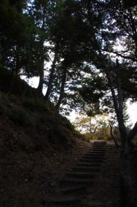 茶臼山の山道(参道)、山頂へ(大台町)
