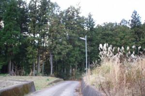 北畠神社〜道の駅 奥伊勢おおだい(大台町)