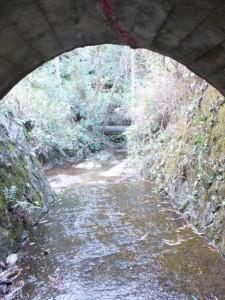 「バカ曲がり」への暗渠(熊野古道伊勢路)