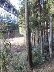 バカ曲がり(熊野古道伊勢路)から望む国道42号 不動谷橋と道標