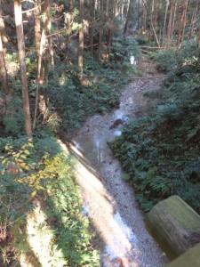 馬鹿曲橋(熊野古道伊勢路)から望む不動谷
