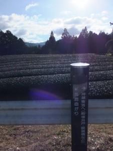 国道42号沿いの道標(熊野古道伊勢路)