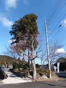 神瀬橋(眼鏡橋)〜殿様井戸、国道42号付近(熊野古道伊勢路)