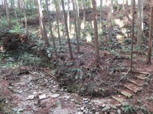 沢越しに望む殿様井戸付近、先ほど迷った場所(熊野古道伊勢路)