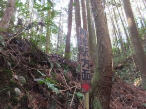 殿様井戸付近から沢を渡ると「川添駅方面→」の案内板(熊野古道伊勢路)