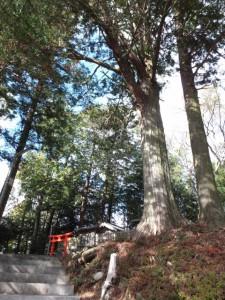 (16) 打見八柱神社