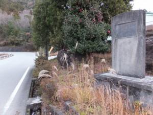 七保林道之碑((11) 野添神社〜(09) 観音堂)