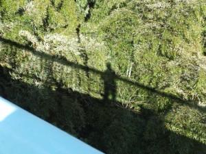 野原橋から望む自分自身の影