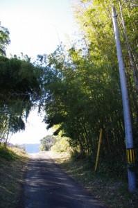圓満寺付近から鴨下神社へ