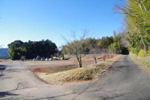 前方には鴨下神社の社叢(圓満寺付近から鴨下神社へ)