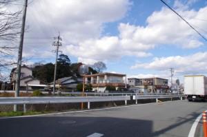 外城田川右岸から望む狭田国生神社の社叢